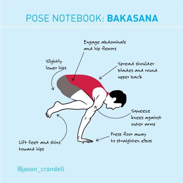 Bakasana   Crane Pose   Crow Pose   Jason Crandell Yoga Method
