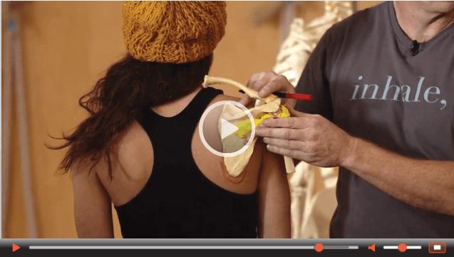 img-video - Jason Crandell Vinyasa Yoga Method